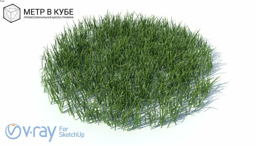 Grass, hight poly + maps, vray ready (009)
