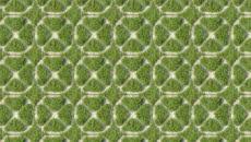 Grass Crete 01