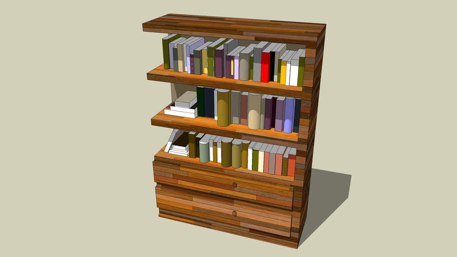 maison1-grande bibliothèque