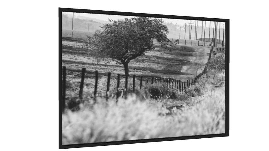 Quadro cerca e estrada - Galeria9, por edmoraes