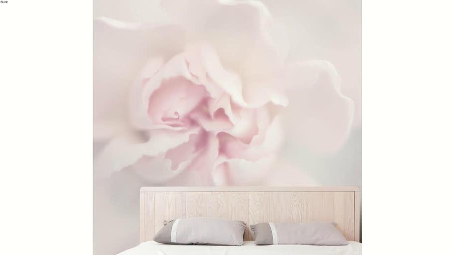 Papier peint panoramique Acte-Deco Fleurs de pivoine