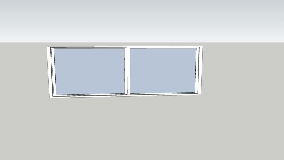 6' X 2' bath window