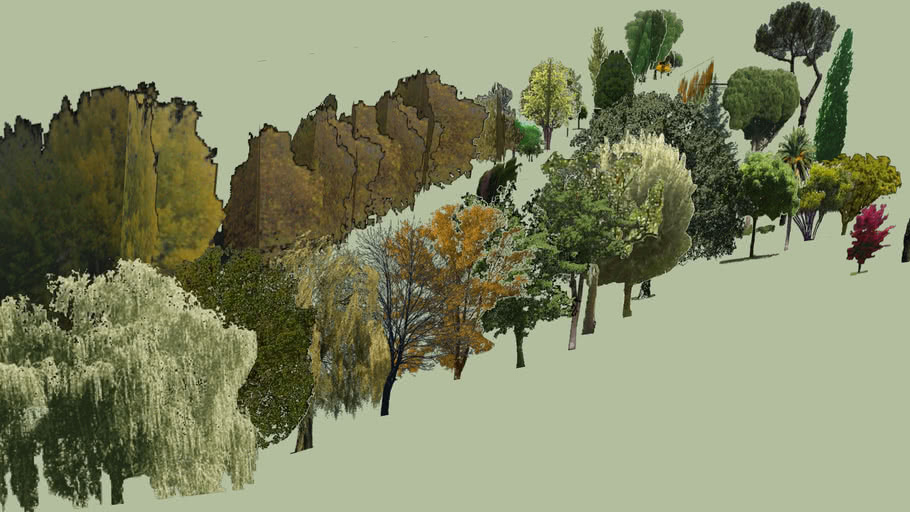 Trees. png-collection