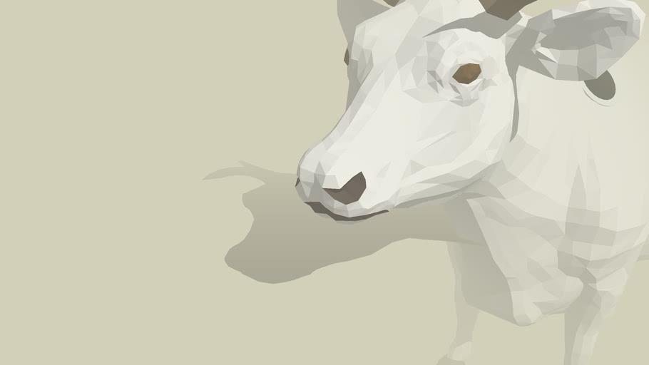 cow smidlein
