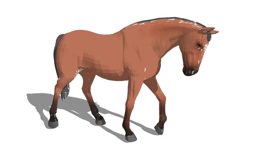 Horse, walking head down