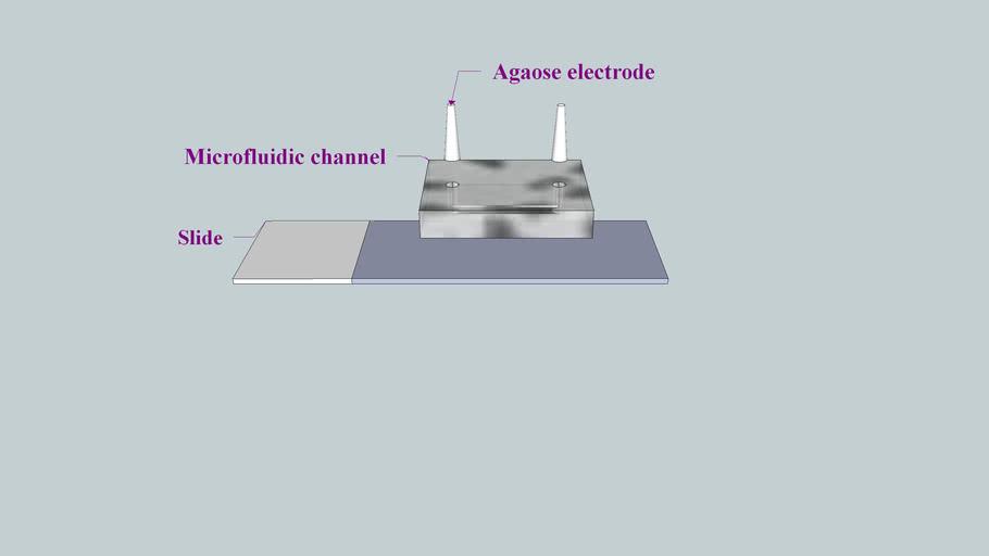 Microfluidic Channel