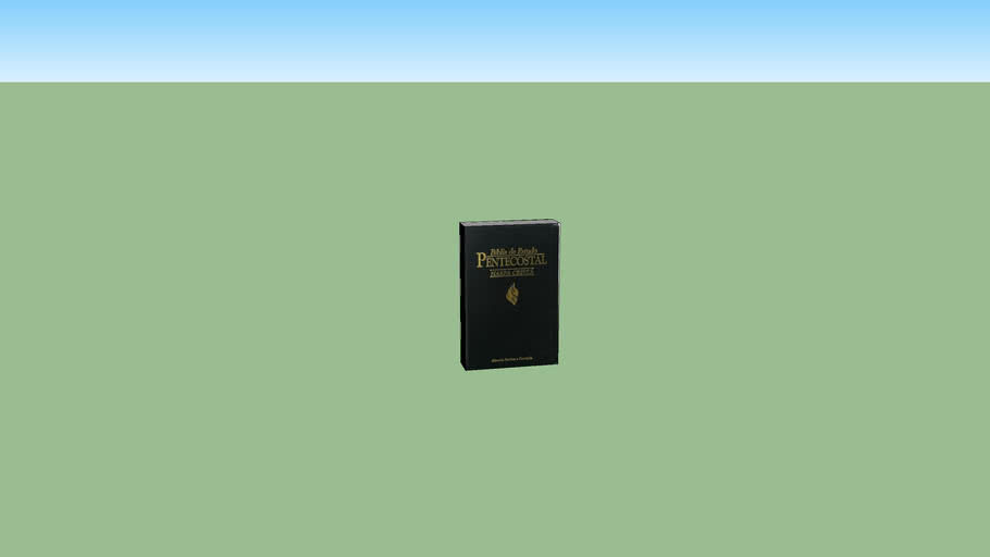 biblia de estudo pentecostal feito por Everaldo da Reta velha Itaborai