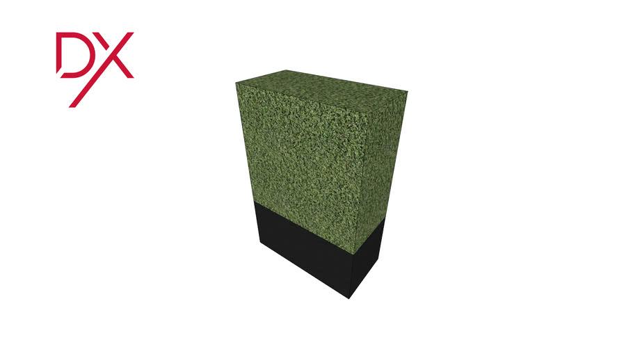 Boxwood - rectangulaire