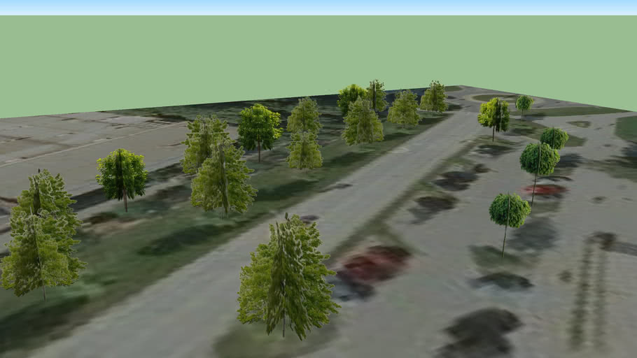 Trinec - trees - 01