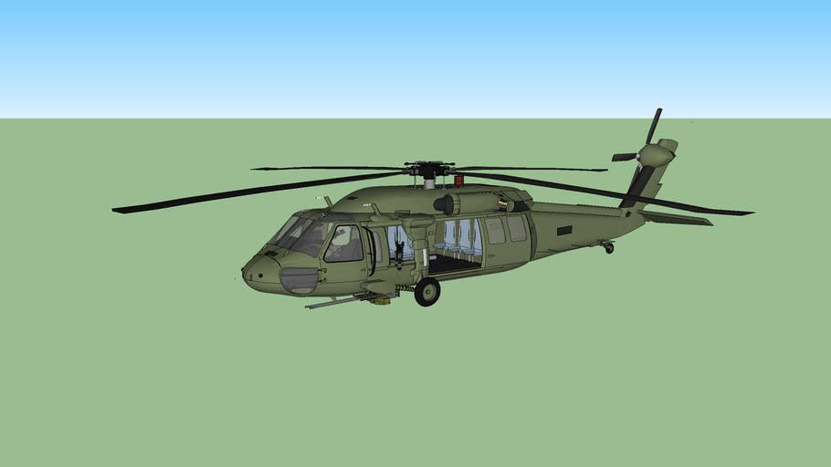 Custom Black Hawk