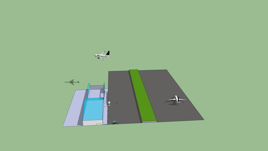 aeropuerto de carlos