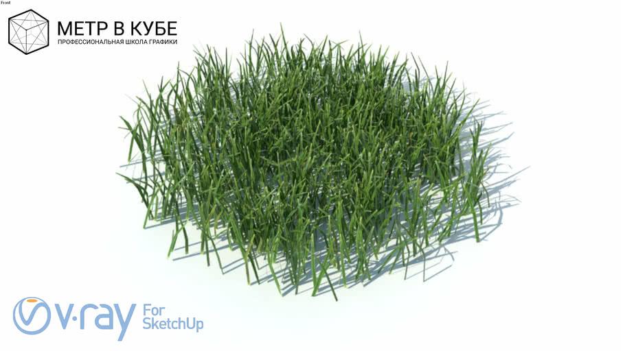 Grass, hight poly + maps, vray ready (008)