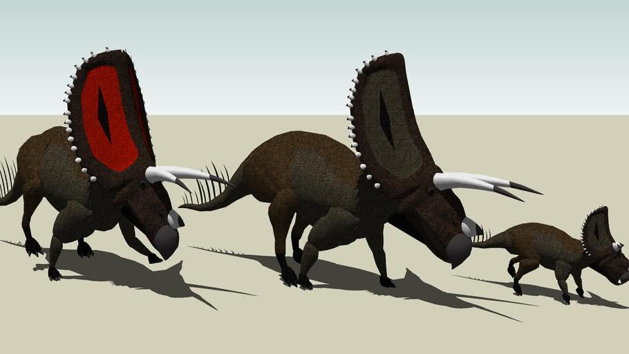 Torosaurus latus