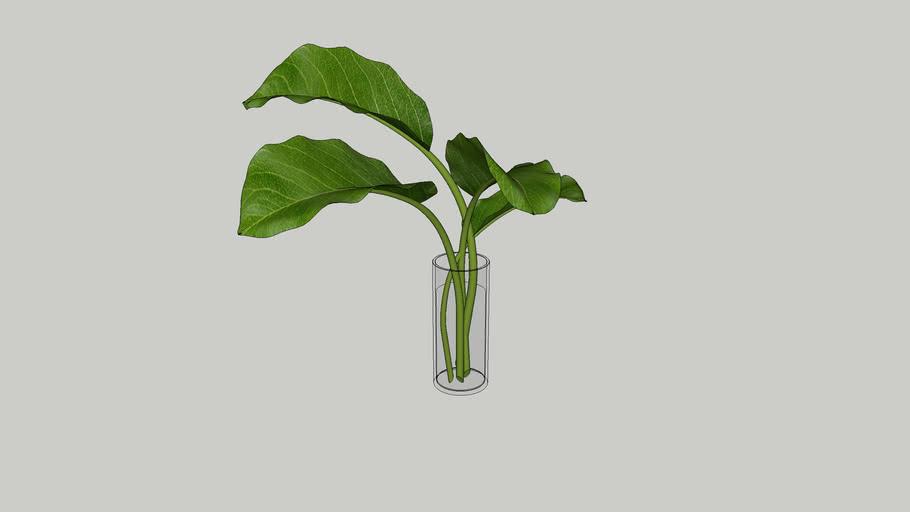 Vegetation 06
