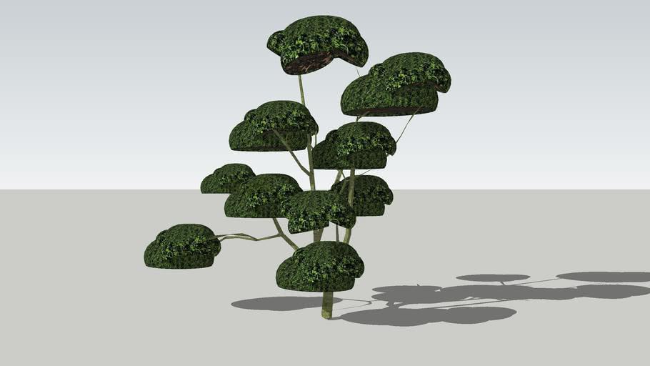 Sculpted tree tree