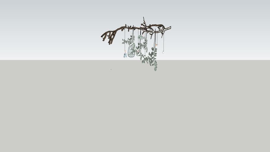 hanging eucalyptus