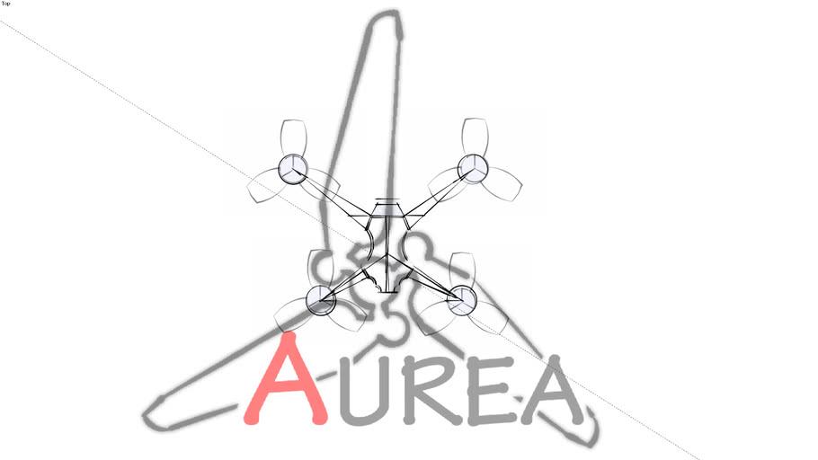 LeoWeick Drone34 Raf-Frame8