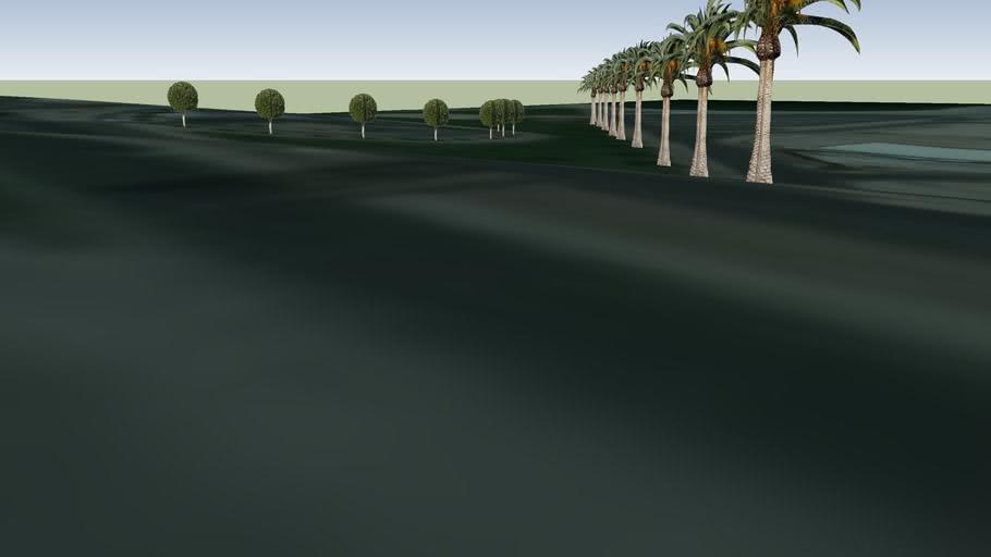 Trees8