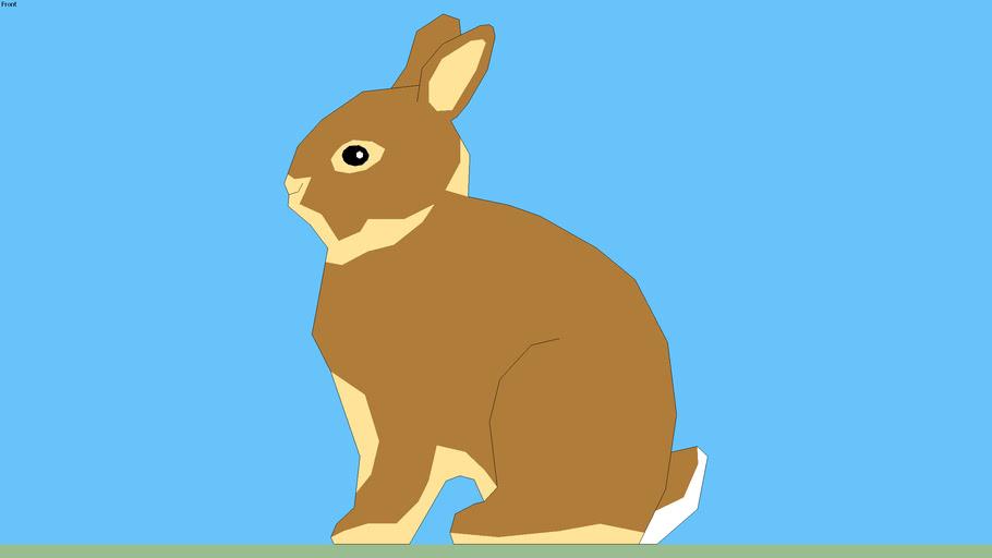 Dwarf Rabbit 2D agouti