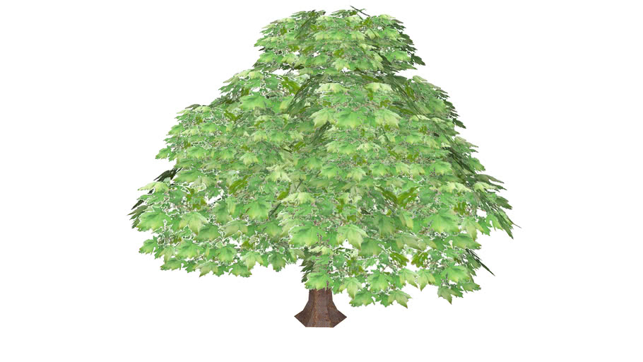 low poly tree Maple (198 KB)