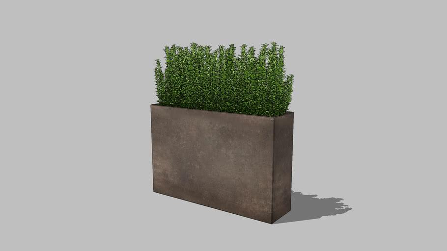 Planter (19)
