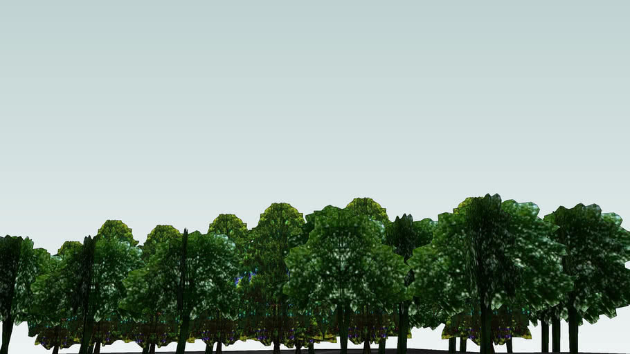 Drzewa Olsztyn 179