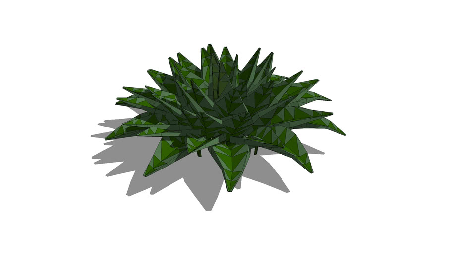 Low Poly Hosta