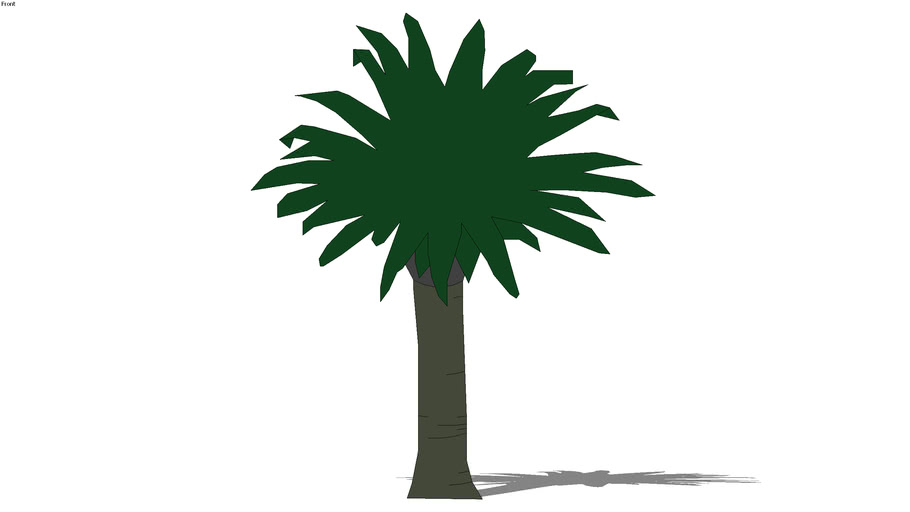 2D schematic date palm3 tree