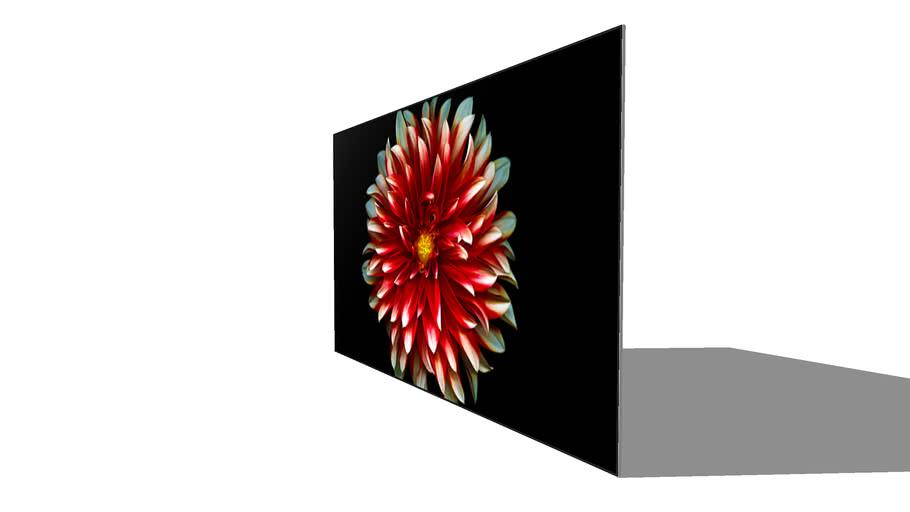 LG OLED65B7P TV