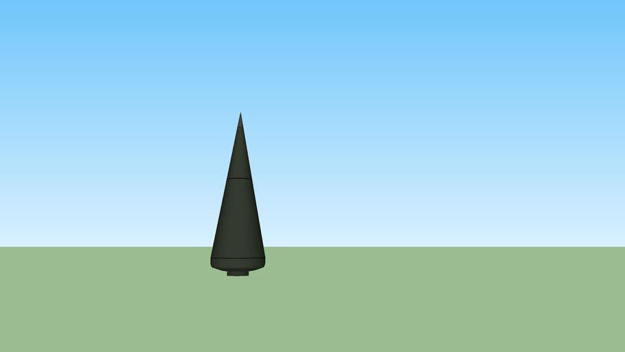 ICBM MIRV  (Warhead) Reentry Vehicle