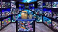 水族用品店   Aquarium supplies shop