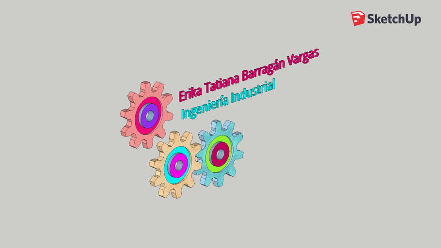 Ingeniería Industrial - Erika Barragán