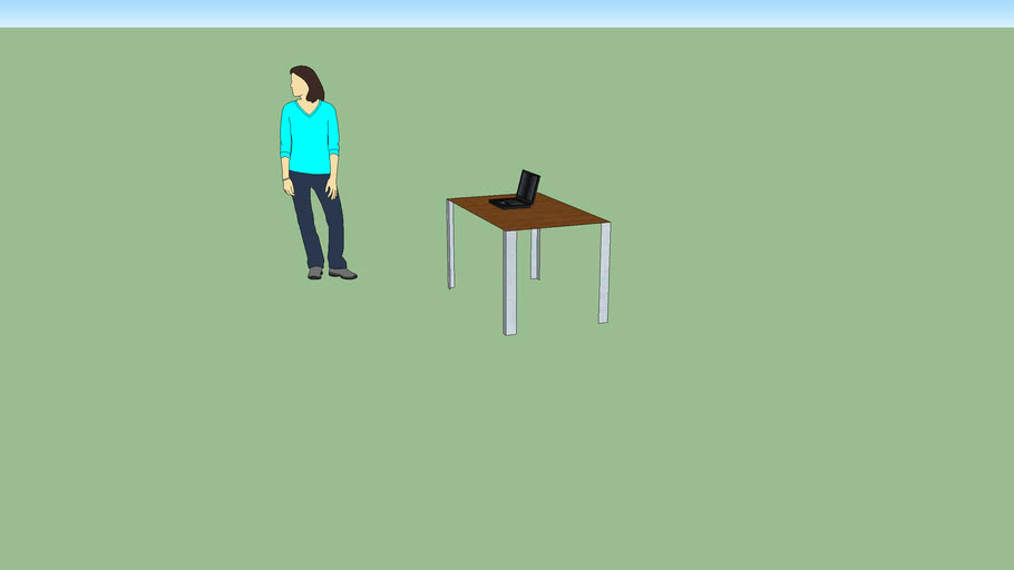 person with laptop and table