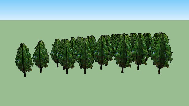 Drzewa Kortowo 57