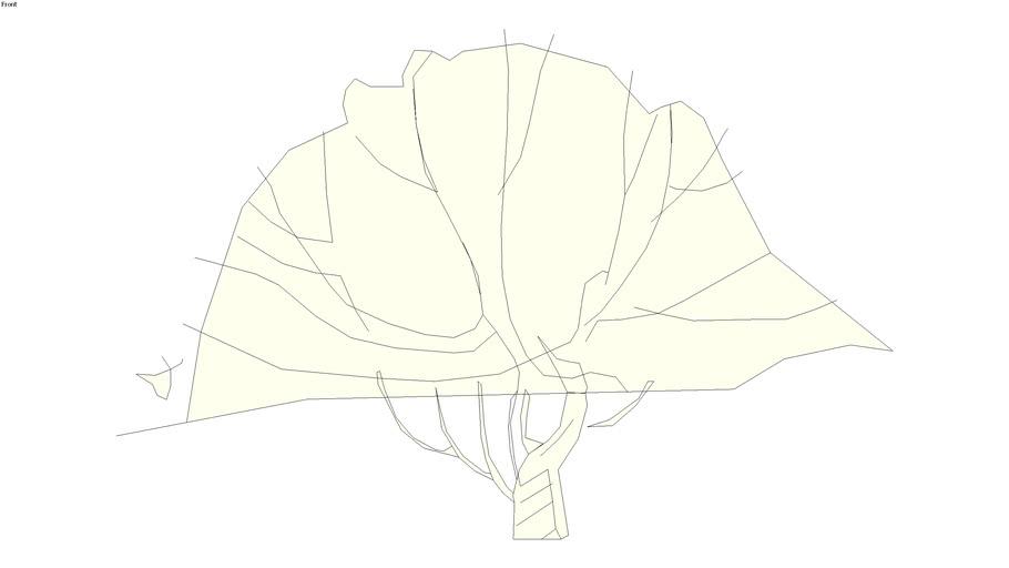 Sketchy tall shrub