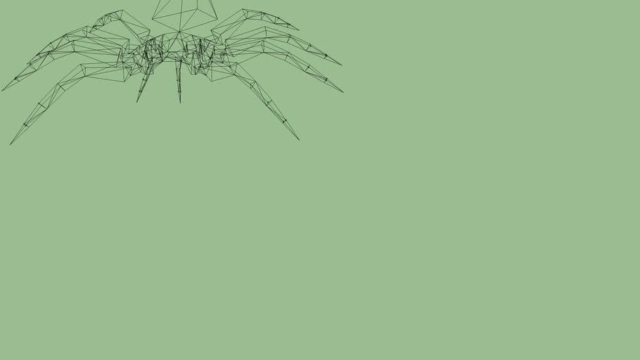 Spider structure