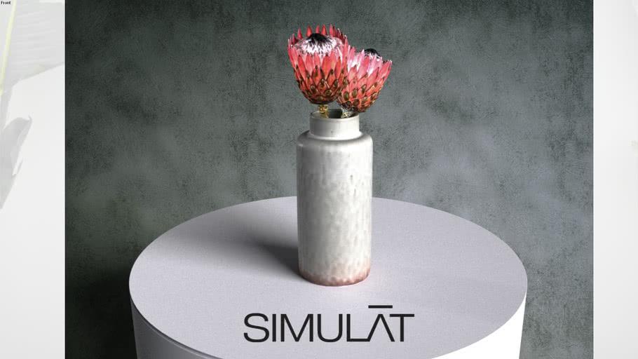 Simulat 3d scanned: Protea Flowers in Ceramic Vase
