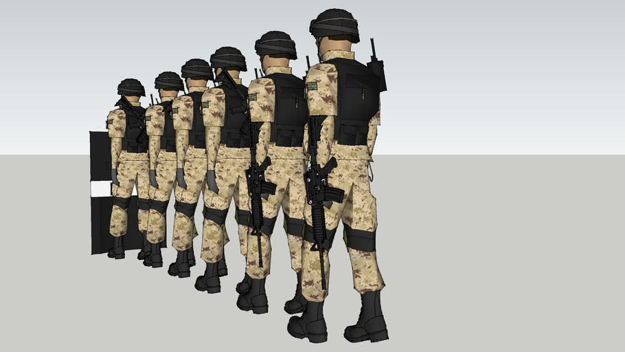 soldados de la sedena de mexico