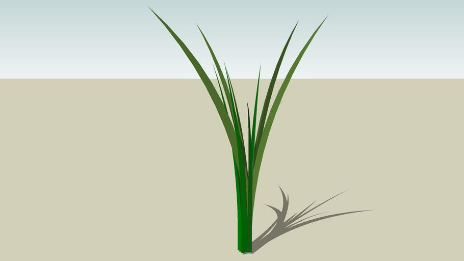 Simple plant
