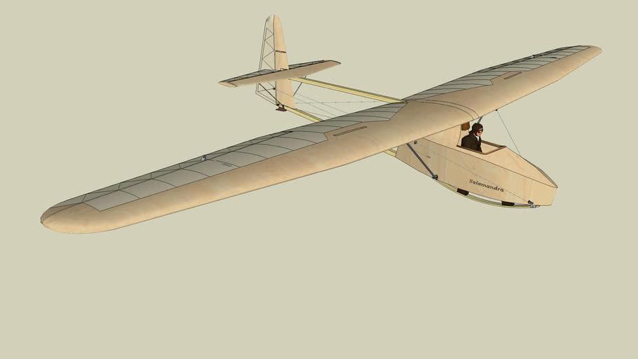 Scale model plane WWS-1 Salamandra
