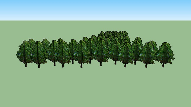 Drzewa Kortowo 119