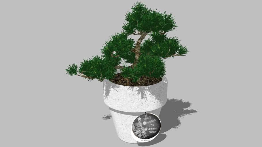 Planter (07)