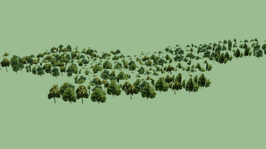 Trees near Stepanakert Stadium