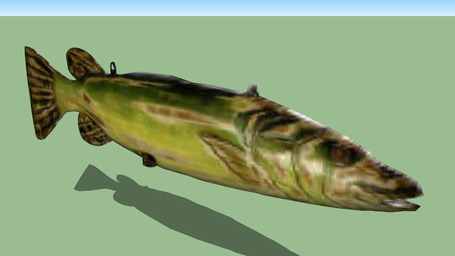 Animales Salvajes 3D