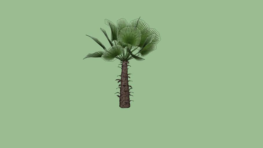 vp333 planta 002