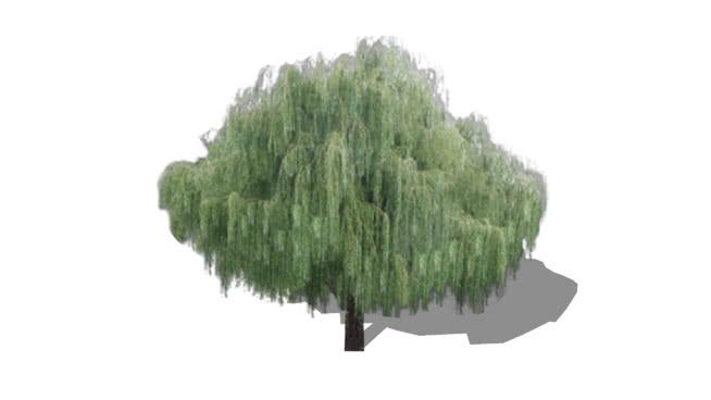 Árvores 2D