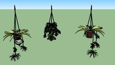 Vegetacion menor