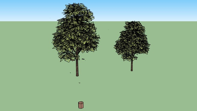 two trees by greenbelt