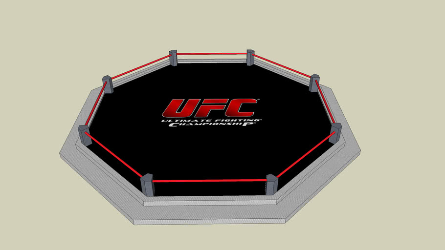 octagon cage fighting ring UFC