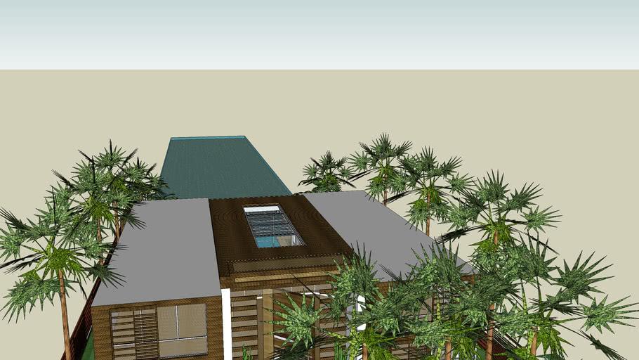 eco friendly house/casa ecologica